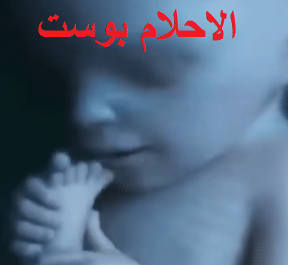 مراحل نمو الجنين بالتفصيل