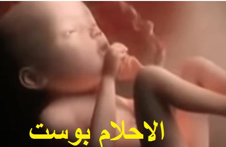 مراحل تكوين الجنين في الشهر الثامن
