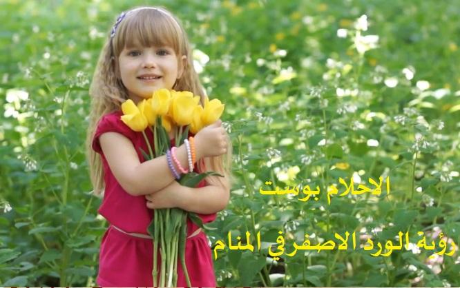 تفسير الورد الاصفر