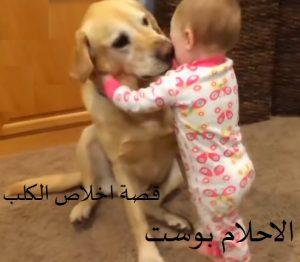 الكلب الوفي مع اللص الشرير